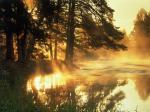 Az Élet folyója